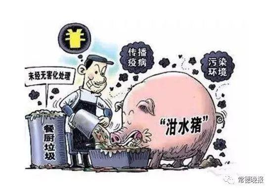 杜绝使用餐厨剩余物喂猪 绝不允许隐瞒疫情