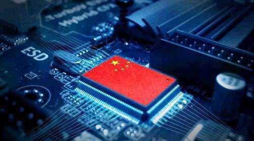 中国工程院院士谈红芯造假